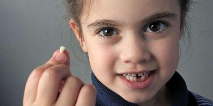 Chodí k vašim dětem zoubková víla? Děti milují fantazii a imaginaci | istockphoto.com