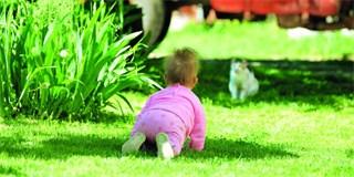 Léto jako příležitost aneb co se děti mohly v létě naučit